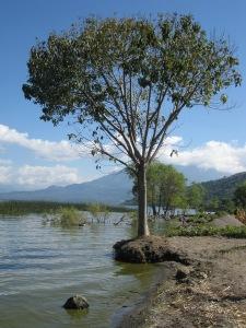 high-lake